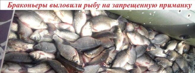 приманка FishHungry
